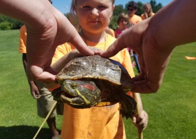 nature_day_turtle_petting