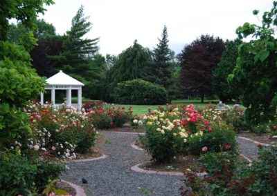 weddings_rose_garden